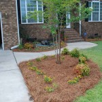 front yard landscaping 5